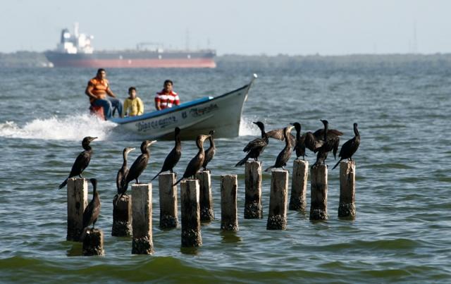 Juan Guerra Pescadores del Lago