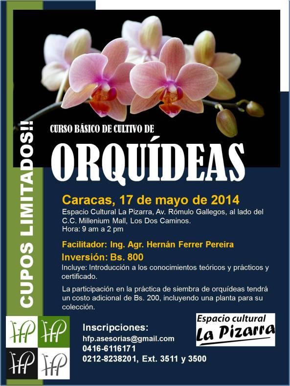 Afiche Curso ORC-1 Ccs Mayo 2014 Corregido