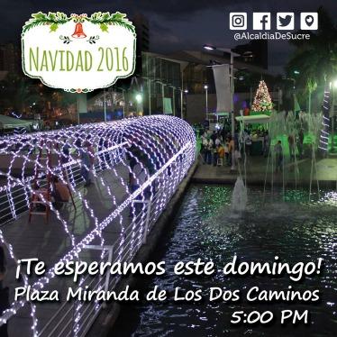 nav_16_plaza-miranda_volante